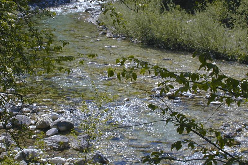 zonation-des-cours-d-eau800600