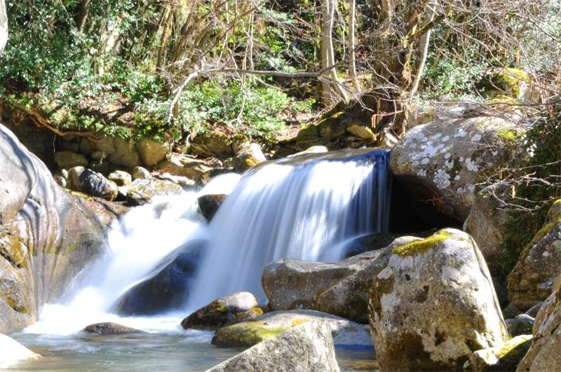 cascade Rotja