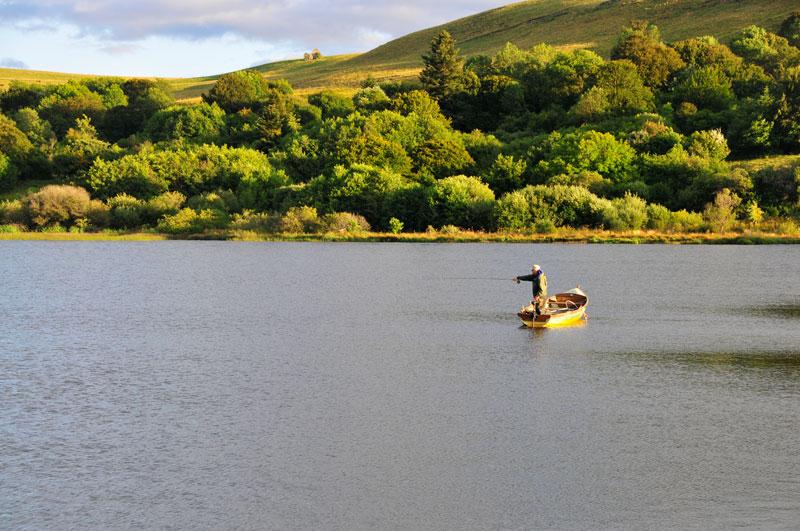 mouche-en-reservoir